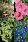 /Images/johnsonnursery/product-images/Mixed Planter 11 Carolina Beach_zs5nto70r.jpg
