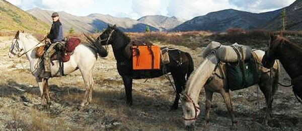 Alaska Horsemen Trail Adventures - 5