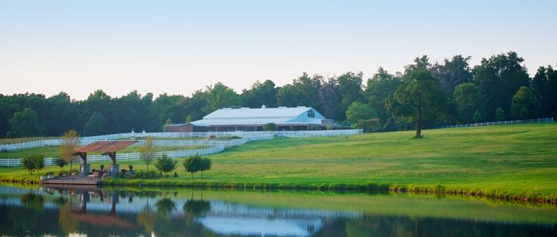 Adaument Farm - 5