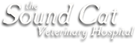 The Sound Cat Veterinary Hospital