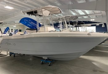 2020 Robalo R222 Alloy Gray (ON ORDER) Boat