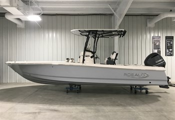2020 Robalo R246 Cayman Alloy Grey liquid-unknown-field [type] Boat