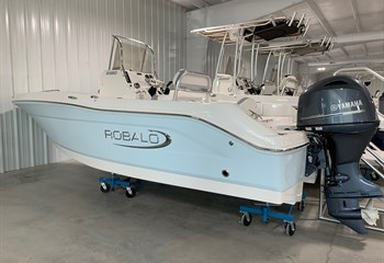 2021 Robalo R180 Ice Blue/White (On Order) Boat