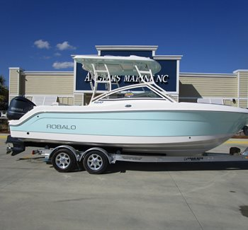 2019 Robalo R247 Sea Foam Green liquid-unknown-field [type] Boat